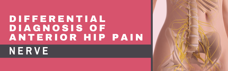 Differential Diagnosis of Anterior Hip Pain_Nerve_Blog Banner