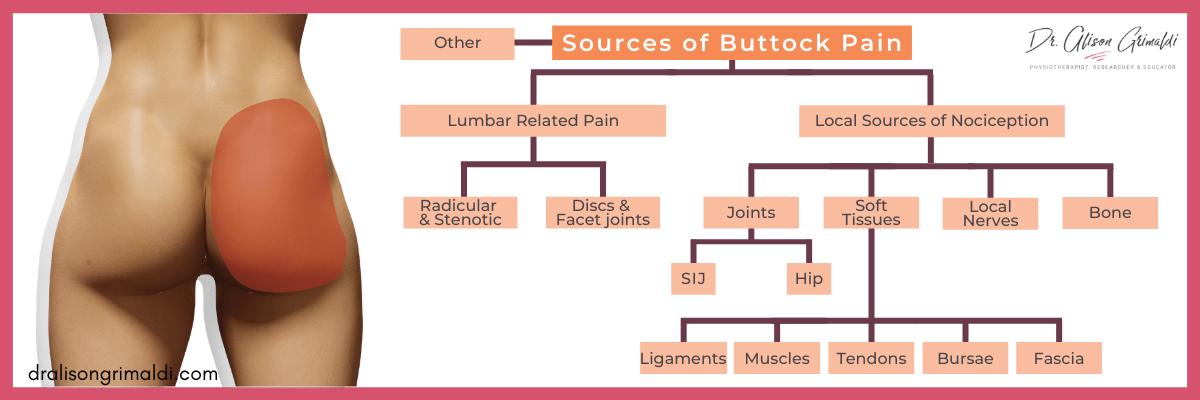 Dr-Alison-Grimaldi-Blog-Graphic-Sources-of-Buttock-Pain